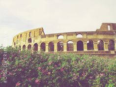 Colossem in Rome | DCI Engineers