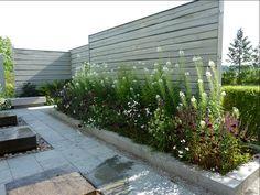 """Wij trädgårdar, Ockelbo. Fantastisk färgkombo i rabatten.  """"Vacker kombination med stäppsalvia, vitpytta, vit rallarros,borstnejlika mm"""""""