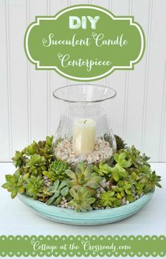Easy to Make Succulent Candle Centerpiece