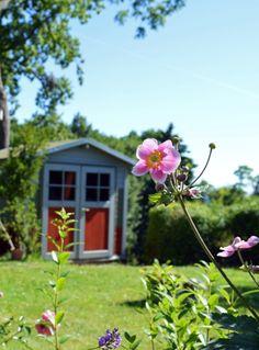Garten mit Meerblick der Ferienwohnung in Göhren auf Rügen   #fewio #ferienwohnung #ruegen #goehren #ostsee #urlaub #ferien #unterkunft #ostseebad #garten #sommer #blumen #himmel #entspannung Plants, Peacock, Lawn And Garden, Shed, Heavens, Flowers, Plant, Planets