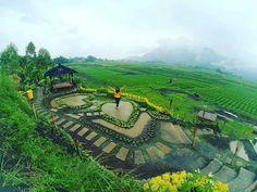 Photo Kota Malang,Wisata, Kuliner, Sejarah | PhotoMalang.com