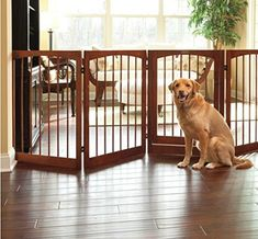 5-Panel Pet Gate - 36'H - Rubbed Walnut -- Want additional info? Click on the image. (This is an affiliate link) #DogCare
