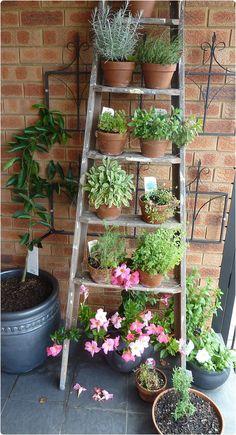 Kreative Idee: Diy Brown Alte Gartenleiter aus Holz mit Creative Idea: Diy Brown Old wooden garden ladder with …,