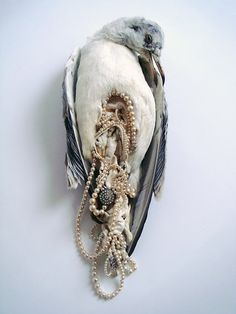 "Jane Howarth's Bonne Bouche is a collection of 1930s taxidermy sea birds stuffed with junk jewelry. On her website, Howarth states, ""Glamourous ladies discard their fashions and adornments and head for the seduction of the shimmering surf and shingle. Upon their distraction scavenger gulls descend and feast on the picnic of kid leather gloves, pearl necklaces and other delightful  items left abandoned on the sand."""