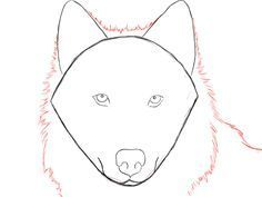 How to draw a wolf easily, step by step is the tutorial today. All you need is a pencil and paper to get started drawing your wolf!