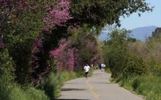 A guide to running in San Jose, California. Some of the best places to run are Guadelupe River Trail, Los Gatos Creek Trail, Hellyer Park, Coyote Creek