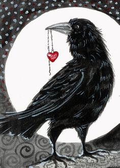 """""""Crow Raven, You Stole My Heart""""  ~ How, I do not know but now it's gone please, where did it go?.....<3   ~"""