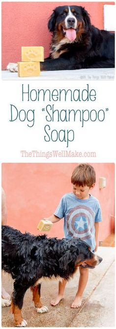 Get your dog clean the easy way with this dog soap recipe. I'll show you how to make a homemade dog shampoo soap bar, and how we use it to clean our pup. via @thethingswellmake