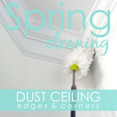 Spring Clean in 30 Challenge:  Day 1 Dust ceiling corners & edges via A Bowl Full of Lemons