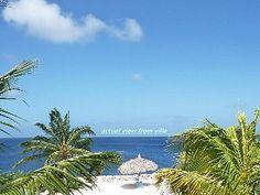 Direct Ocean & Pool Front, Marazul Dive Resort, New King Bed