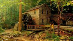 house forest 8 Top 10 Most Beautiful Forest Houses Part 2