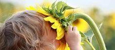 Bom fim de semana! :)  Aproveite para nos fazer uma visita:  www.byanarocha.webs.com