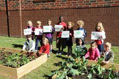 School Garden Resource Center | Whole Kids Foundation