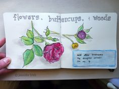 Jenny's Sketchbook: Gratitude Journal - Flowers, Buttercups, and Weeds