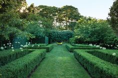 Anna Wintour's Wild Garden - The New York Times