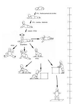 postures bb0