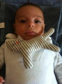 Oggi il principino  dell'Oasi  dei mici felici compie  tre mesi!!!