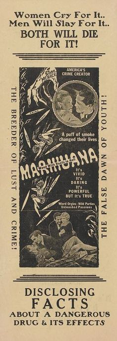 Vintage antimarijuana ad. Marijuana is far less dangerous than alcohol, tobacco, prescription drugs, cocaine, meth, etc.Make easy, small mints for safe pain relief or enjoyment! MARIJUANA - Guide to Buying, Growing, Harvesting, and Making Medical Marijuana Oil and Delicious Candies to Treat Pain and Ailments by Mary Bendis, Second Edition. Just $2.99 for great e-book!  www.muzzymemo.com