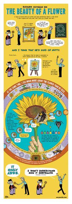 ZEN PENCILS » 137. RICHARD FEYNMAN: The beauty of a flower -- this is beautiful :) gotta love zen pencils! and science! ;)