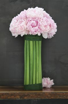 Pink peony in amaryllis stems