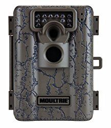 Want to buy the best trail camera of 2016? See our simple trail camera comparison guide with reviews to easily find the best game camera for your needs.
