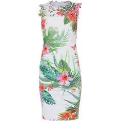 Elie Tahari Weslee Tropical Print Lace Dress (1.354.645 COP) ❤ liked on Polyvore featuring dresses, prints, lace overlay dress, sheath dress, white lace dress, pink lace dress and lace cocktail dress