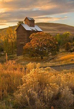 Gorgeous old barn blends into the landscape Country Barns, Old Barns, Country Life, Country Living, Country Roads, Country Fall, Beautiful Places, Beautiful Pictures, Beautiful Scenery