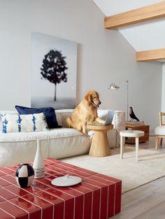 Liverpool_Pitanga #tile #ceramic #livingroom #colour @Beste Ersoylu Cerâmica