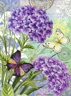 Purple gerainiums and butterflies.