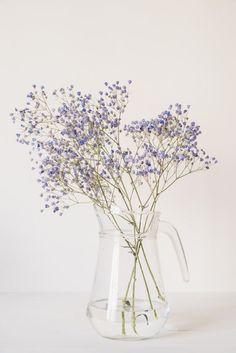 #lingeriebio #loungewear #cotonbio #blanc #bien-être #luxe #modeethique #ecoresponsable #madeinfrance #cotedazur #artdevivre #lifestyle #sustainablefashion #organiccotton #organicunderwear Violet Aesthetic, Lavender Aesthetic, Flower Aesthetic, White Aesthetic, Purple Wallpaper, Flower Wallpaper, Wallpaper Backgrounds, Aesthetic Backgrounds, Aesthetic Iphone Wallpaper