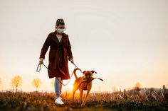 Woman wearing a protective mask is walking alone with a dog outdoors because of the corona virus pandemic - Buy this stock photo and explore similar images at Adobe Stock Protective Mask, Walking Alone, Outdoor Dog, Business Photos, Your Pet, Women Wear, Stock Photos, Canning, Pets