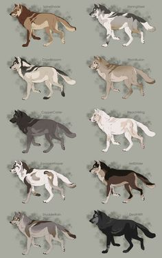 Semi-Realistic Wolf Adoptables Set 7 - CLOSED by Therbis on DeviantArt