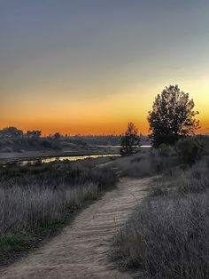 Sun has set, people have gone home, it's peaceful and quiet on the Back Bay Trail... Has Gone, Newport Beach, Trail, Country Roads, California, Sun, People, People Illustration, Folk
