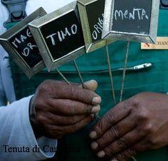 Fresh herbs from Tenuta di Canonica Fresh Herbs, Wedding Styles, Real Weddings, Presentation, Natural, Nature, Au Natural