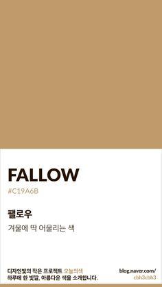 Pantone Colour Palettes, Pantone Color, Brown Pantone, Flat Color Palette, Neutral Colour Palette, Colour Dictionary, Pantone Swatches, Color Beige, Colour Board