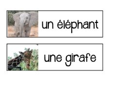 Primary French Immersion Resources: Les Animaux - Zoo Flashcards/WordWallCards/BANG