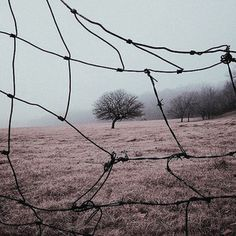 gilded cage, a playlist by Katie Newman on Spotify The Book Of Ivy, Winter Wonderland, Apocalypse Aesthetic, Ju Jitsu, Between Two Worlds, Southern Gothic, American Gods, End Of The World, Post Apocalyptic