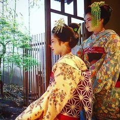 japanese seasonal tradition held - 236×236