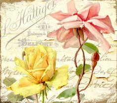 """Mindy Sommers - """"Florabella IV"""""""