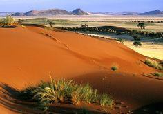 16 / Namibia Safari and Lodges - Gondwana Collection Land Of The Brave, Namibia, Namib Desert, Main Attraction, November 2013, Lodges, Dune, Giraffe, Egypt