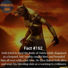 Fact Seth tried to Steal the body of Osiris while disguised as a leopard, but Anubis caught him, and branded him all over with ahot iron. He then flayed Seth alive, and wore his bleeding skin as a warning to evfldoers. Greek Mythology Family Tree, Baby Witch, Egyptian Mythology, Modern Witch, Rhyme And Reason, Gods And Goddesses, Book Of Shadows, Funny Facts, Folklore