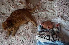 Vauva ja kissat Bassinet, Kids Rugs, Home Decor, Crib, Decoration Home, Kid Friendly Rugs, Room Decor, Cots, Baby Crib