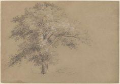 'White Oak' by Jasper Francis Cropsey (1823-1900, United States)