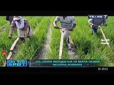 ON THE SPOT - Julukan Indonesia di Mata Dunia