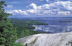 Finnish National Landscape at Koli Hills