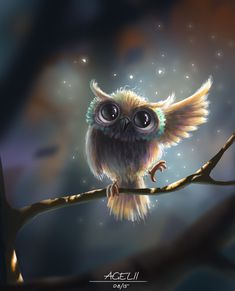 Anything cuter that a baby owl? Cute Owls Wallpaper, Animal Wallpaper, Owl Photos, Owl Pictures, Baby Owls, Cute Baby Animals, Cute Animal Drawings, Cute Drawings, Owl Drawings