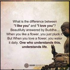 That's why I always get you a plant instead of flowers girl flowers you have to put in some effort/fine/love for it to thrive/grow...