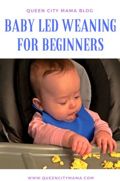 Baby Led Weaning - Circle of Moms