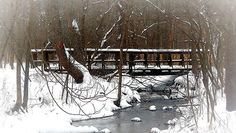 """over the bridge thru the woods"" -Winter  Canoe Creek State Park"