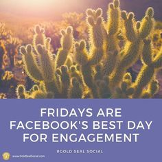 Engagement is crucial on Facebook! If you're not getting Likes Comments & Shares your page will quickly fade away. #goldsealsocial #marketing #agency #socialmedia  #SMM  #SocialMediaManager #Advertisers #Digital #SEO #Specialist #Growth #Happiness #Progress #Success #instamood #instadaily #picoftheday